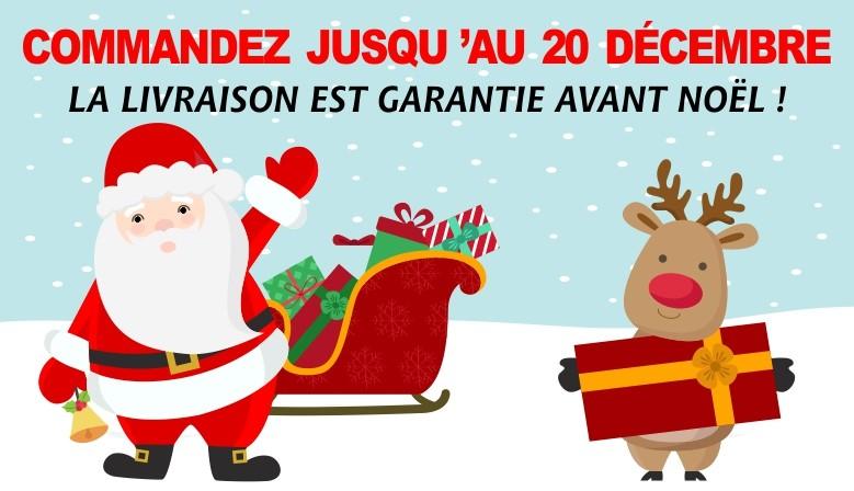 Commandez jusqu'au 20 décembre, la livraison est garantie pour Noël !